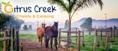 CITRUS CREEK Chalets & Camping