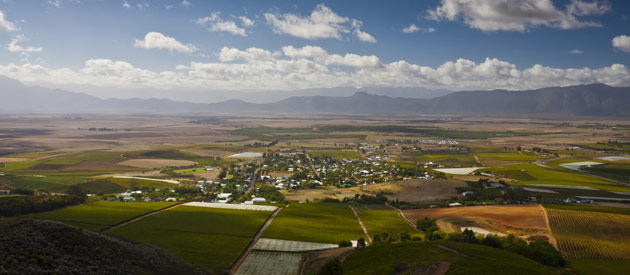 Riebeek Kasteel is a small town situated in the West Coast region of the Western Cape, South Africa.