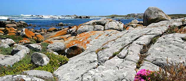 Jacobsbaai, in the Western Cape, South Africa